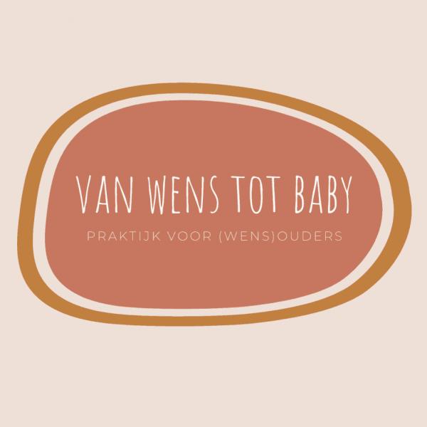 van wens tot baby-9